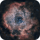NGC 2239 Rosette Nebula 20201108 7440s HOO 01.7.4,                                Allan Alaoui