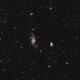 NGC3718 Widefield,                                Erik Guneriussen