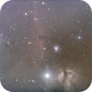 Horsehead and Flame Nebulas,                                Frank Drewes