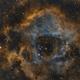 NGC 2237 - Rosette Nebula,                                Danilo Caldini