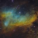 IC 4628 - Prawn Nebula,                                Rodrigo Andolfato