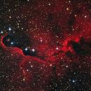 IC 1396A: Elephant's Trunk Nebula,                                Garrett Hubing