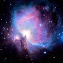 Orion Nebula,                                Liam2186