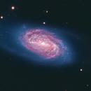 NGC 2903,                                Ara