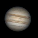 Jupiter GRS, Europa, Europa shadow,                                Carlos Alberto Palhares - OBSERVATÓRIO ZÊNITE