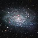 M33 - Triangulum Galaxy,                                Greg Polanski
