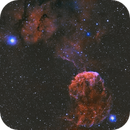 The Jellyfish Nebula IC 443 now with 10 hours of OIII,                                Dan Pelzel
