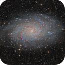 M33 - Triangulum Nebula,                                Lukas_TW