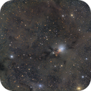 NGC 1333,                                Rodrigo