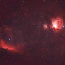 Orion & Horsehead Nebula,                                Ali Namdar