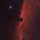B33 - Ha(sG)OIII - Horsehead Nebula,                                Roberto Botero