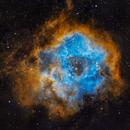Rosette Nebula (Caldwell 49),                                Jaganath A