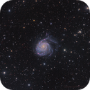 M101 Pinwheel Galaxy,                                Francesco Wueest