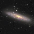 Sculptor Galaxy NGC253  - Sadr Chili,                                Arnaud Peel