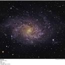 M33 - THE TRIANGULUM GALAXY,                                Joe Gilker