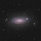 M63 - Sunflower Galaxy,                                Riccardo Balia