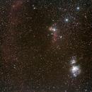 Orion wide field,                                Dan Phillips
