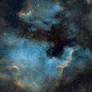 The North America Nebula, NGC 7000,                                Harri Kiiskinen