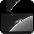 Sun 6_18_2020: Ha,                                Alan