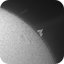 Sun in Halpha - February 8, 2020 (w/ AR2803),                                JDJ