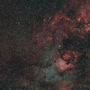 NGC 7000 - North America Nebula,                                igorb