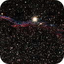 "NGC 6960 (Western Veil, aka ""Witch's Broom"" ),                                Don Holmgren"