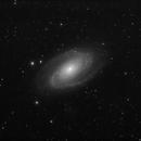 M81 Bode Nebula,                                S. DAVID