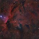 NGC 6193,                                Gerson Pinto