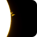 Solar Prominence,                                Ian Papworth
