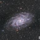 Messier 33,                                Chris R White