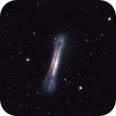 City NGC 3628,                                angelo mazzotti