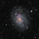 NGC300 in LRGB and Ha,                                TWFowler