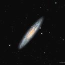 The Sculptor Galaxy, NGC 253,                                Russ Carpenter