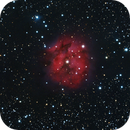 Cocoon Nebula IC5146,                                Everett Lineberry