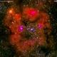 ic1396 ammasso  aperto con nebulosa nel cepheus                                    distanza  3.000 A.L.,                                Carlo Colombo