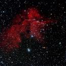 Wizard Nebula,                                Steve Cross