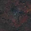 Elephant nebula.,                                Andrew Brown