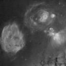 On the Scorpius Ophiuchus Border,                                John Gleason