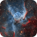 Thor's Helmet Nebula - NGC 2359 - HOO,                                Wissam Ayoub
