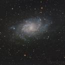 M33 - Triangulum Galaxy,                                igorb