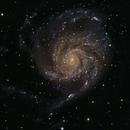 M101,                                Kacper Lewtak