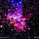 ngc7380 nebulosa petali nel  cepheus                                                 distanza 11.380  A.L.,                                Carlo Colombo