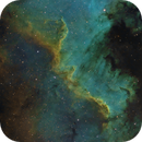 NGC 7000 Cygnus Wall and Central Region in SHO,                                Ben Koltenbah