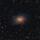 NGC 6744 The Pavo Spriral,                                Leslie Rose