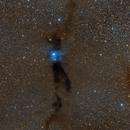Bernes 149, a reflection nebula in a dark cloud (Lupus 3),                                Frank