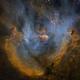 IC 2944 - Running Chicken Nebula,                                Brendan Chen