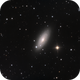 NGC  2841 RGB  fresh data,                                Steve Ibbotson