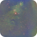 NGC 2264 Cone Nebula and Christmas Tree Nebula-Ha-SHO-Meade 80 ED triplet-Orion flattener-ASI 1600 MM-Pro,                                Adel Kildeev