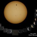 Venus 2012,                                Rauno Päivinen