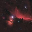 Horse Head Nebula,                                Boštjan Zagradišnik